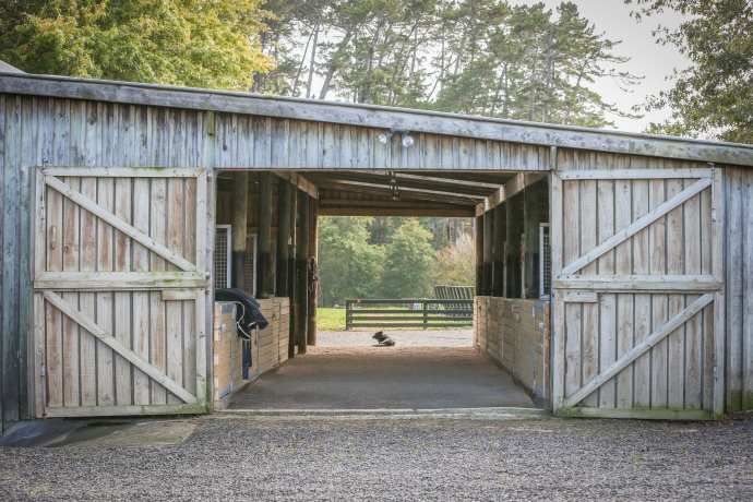 stables - Equine Sports Medicine and Rehab Centre
